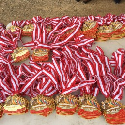 Palace Half medals